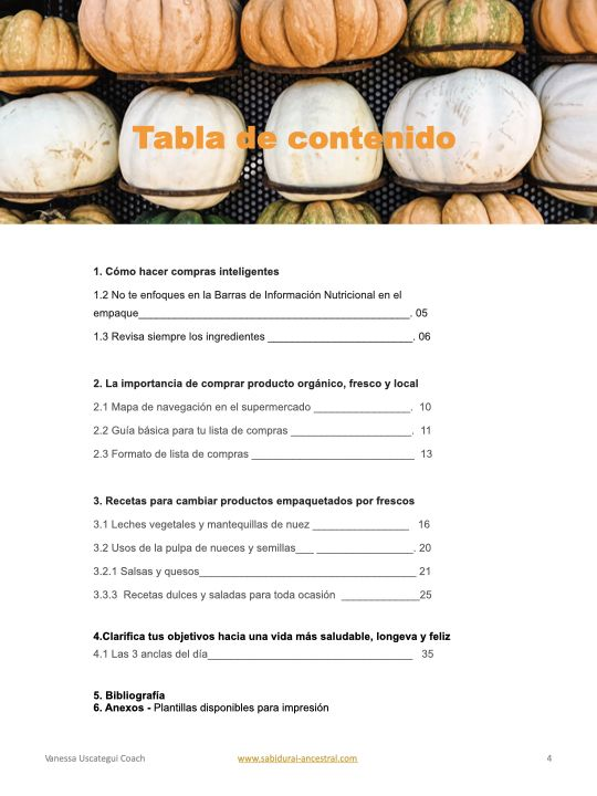 Minimal Recipe eBook Keynote version.004